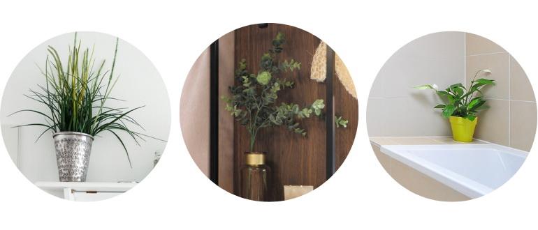 растения в скандинавской ванной