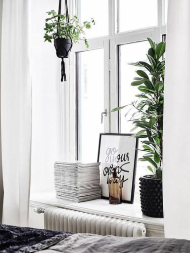 Организация пространства окна